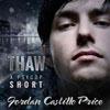 Thaw Audiobook